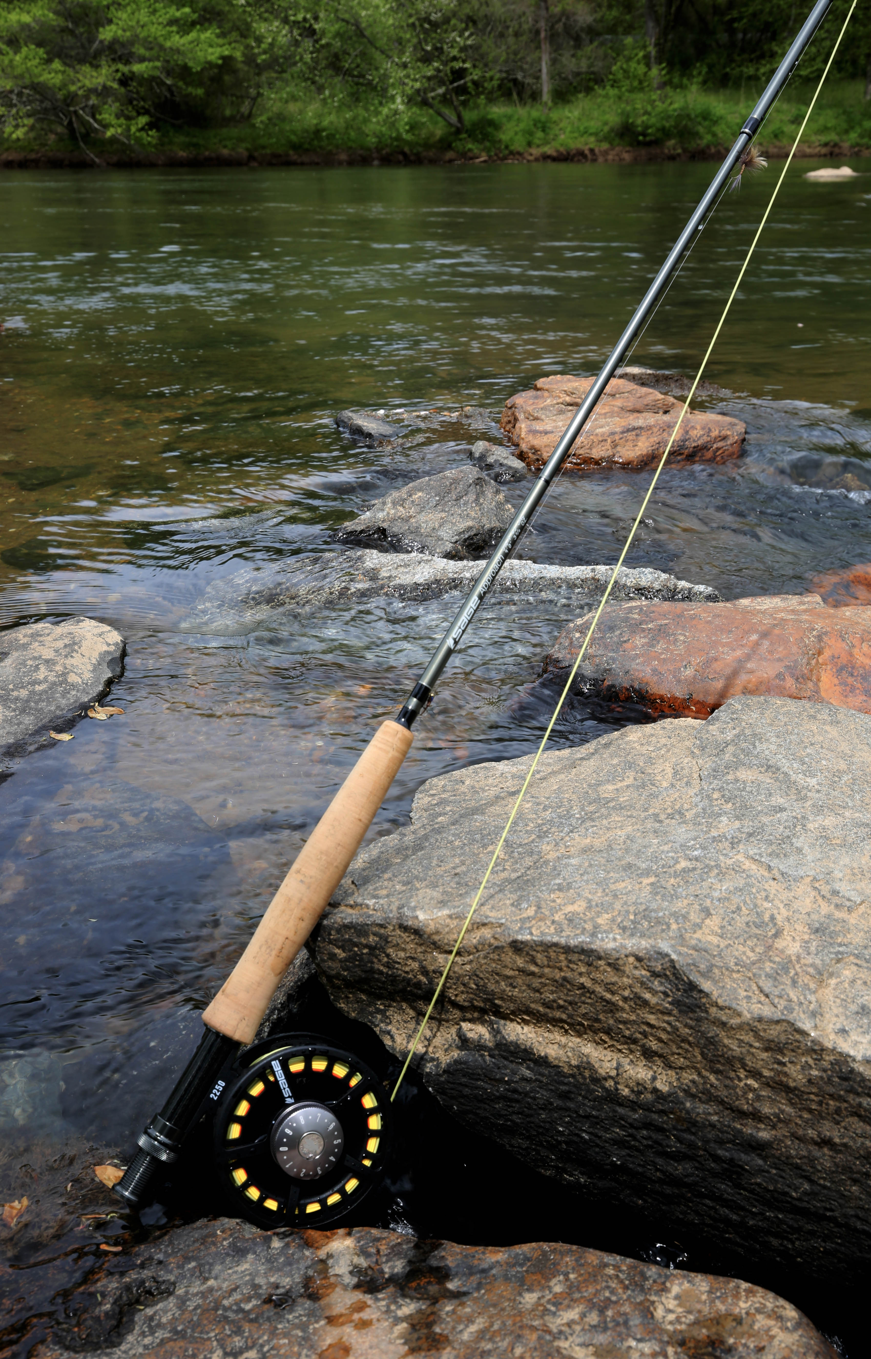 Guided fishing trip in ocoee toccoa area for Toccoa river fishing