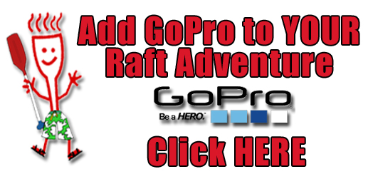 GoPro Here copy
